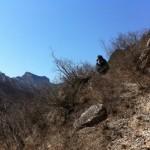 Chinese Tourist Enjoying the View