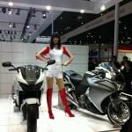 Honda bikes and model